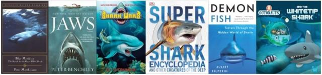 shark-snip-640x150